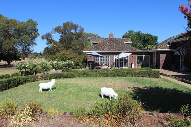 Picture of 336 INGLEWOOD ROAD, LAKE ALBERT NSW 2650