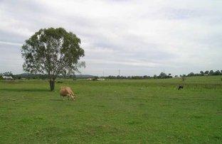 Picture of 492-500 LOGAN RESERVE ROAD, Logan Reserve QLD 4133