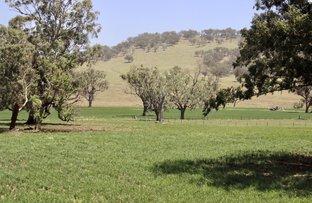 Picture of 1142 Warrah Creek Road, Warrah Creek NSW 2339