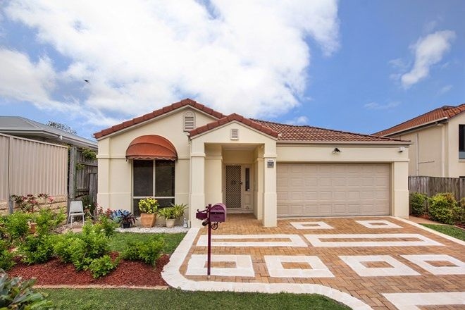 Picture of 14 Kane Crescent, MANSFIELD QLD 4122