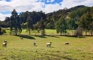 Picture of 2 Huon Highway, Dover TAS 7117