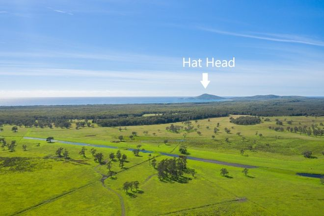 Picture of 742 Hat Head Road, KINCHELA NSW 2440