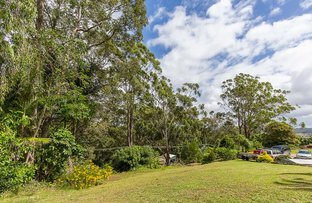 Picture of 41 Lalina Avenue, Tweed Heads West NSW 2485