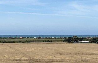 Picture of Lot 3 Seaspray Rd, Seaspray VIC 3851