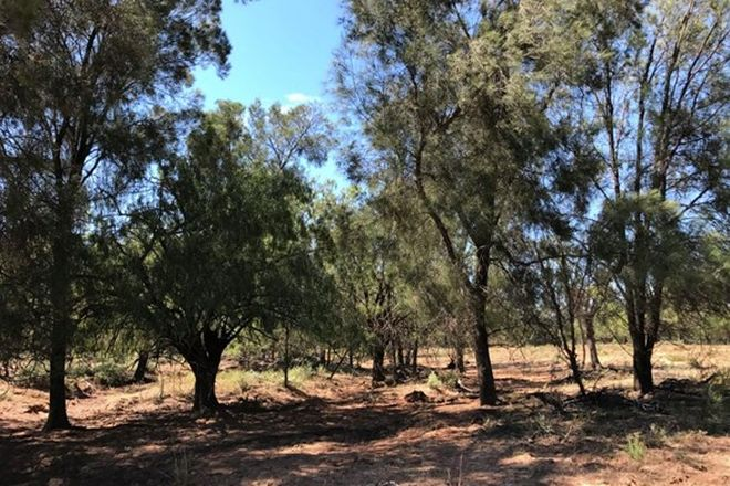 "Picture of Part ""Lagoona"", PILLIGA NSW 2388"