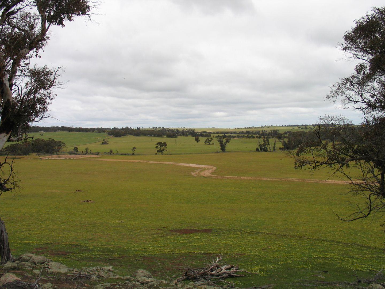 Browns Clarke Road, Coalfields Highway, Arthur River WA 6315, Image 0
