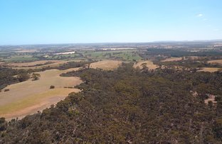 Picture of Lot 14 Playford Highway, Cassini SA 5223