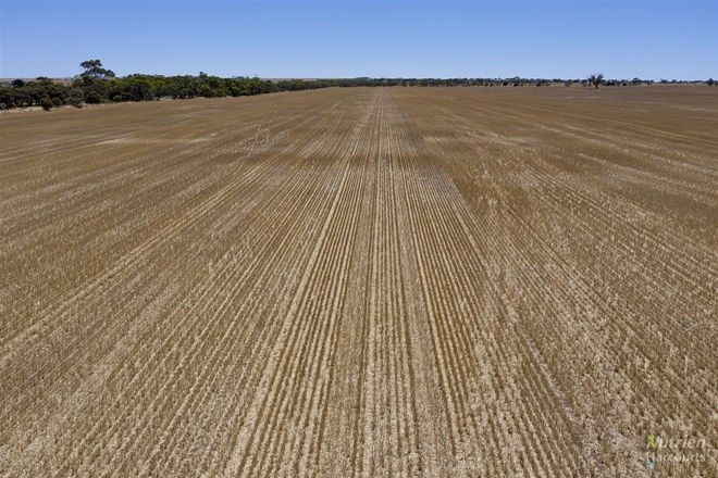 Picture of Sect. 79W Yorke Highway, CURRAMULKA SA 5580