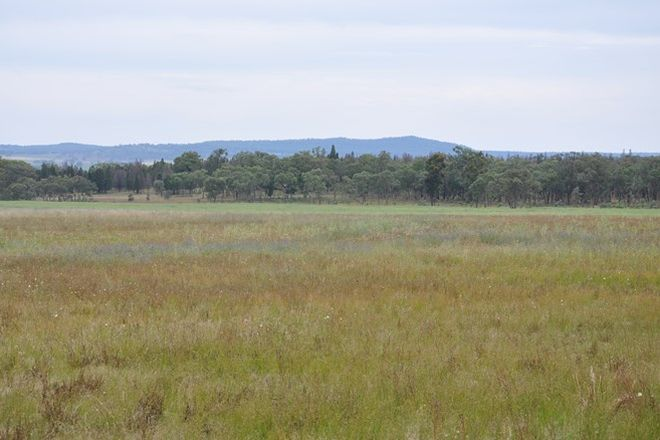 Picture of 4255 Neilrex Road, NEILREX NSW 2831
