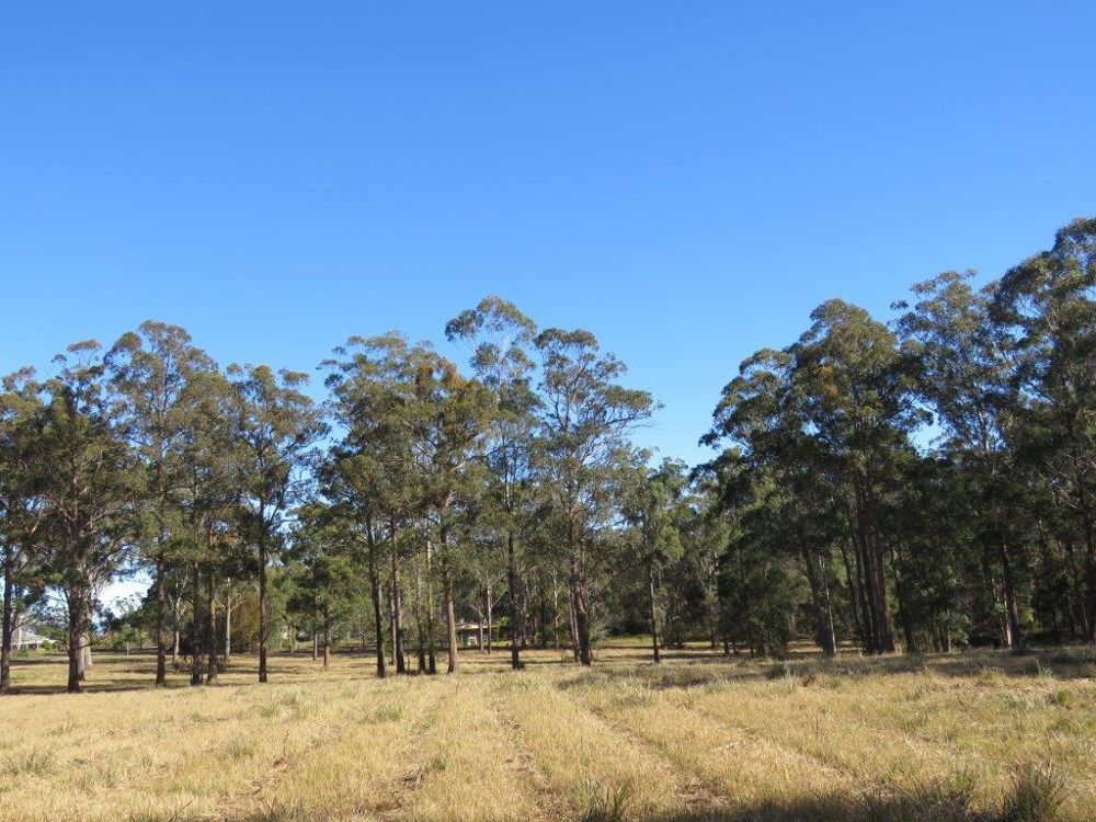 Lots 1, 2 and 3 of 95 Inches Road, East Kempsey NSW 2440, Image 1