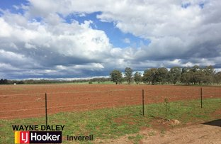 Picture of 76 Thomas Lane, Inverell NSW 2360