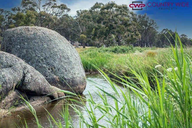 Picture of 466 Balala Road, URALLA NSW 2358