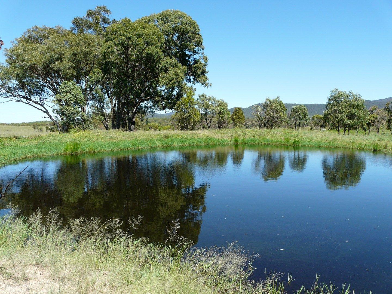 1843 Bruxner Way, Tenterfield NSW 2372, Image 0