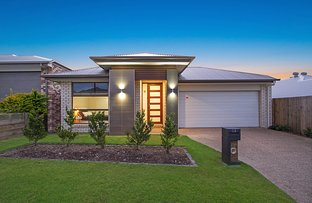 Picture of 13 Arrowsmith Crescent, Ormeau Hills QLD 4208