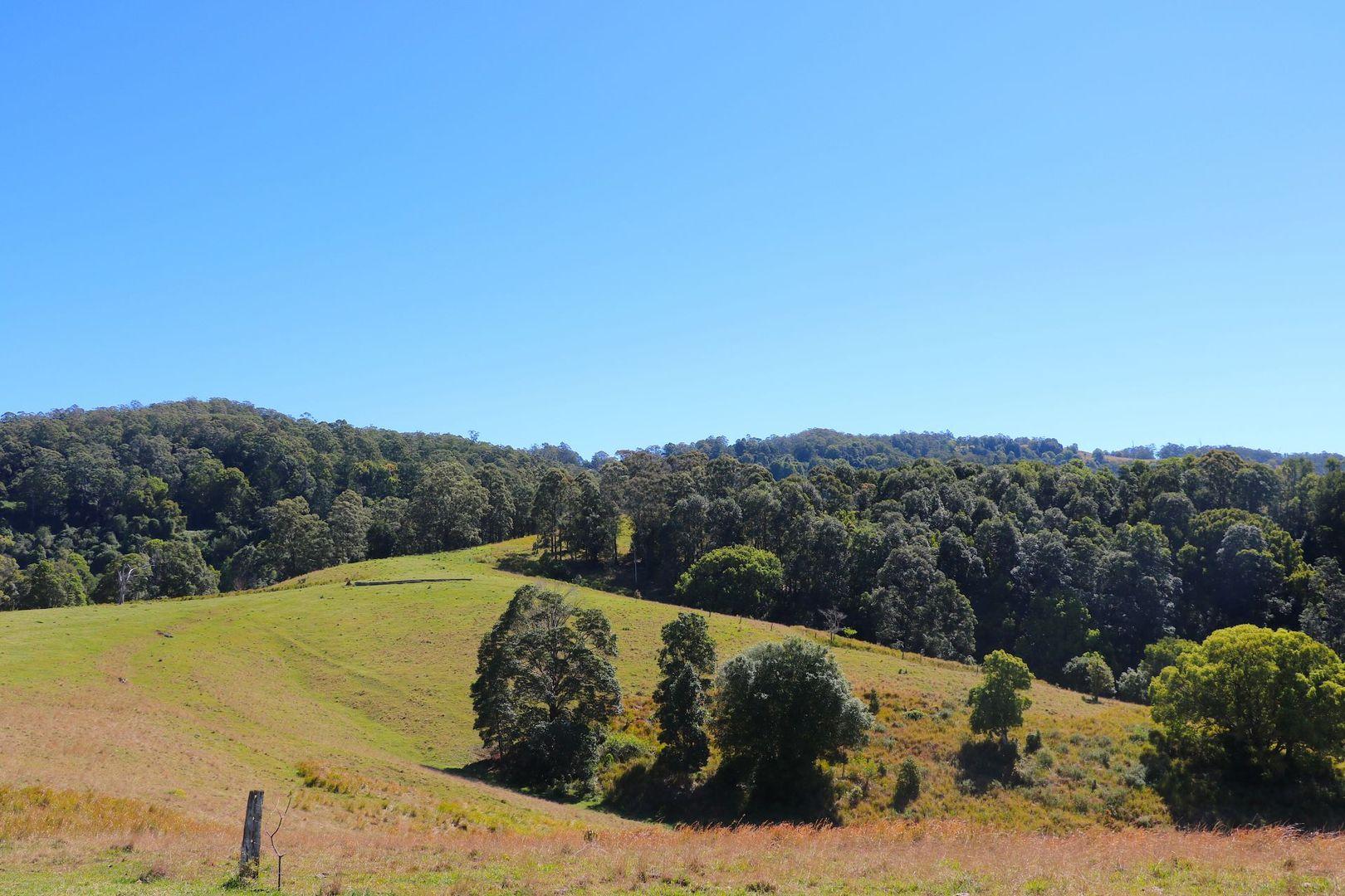591 Tuntable Creek Road, Tuntable Creek NSW 2480, Image 2