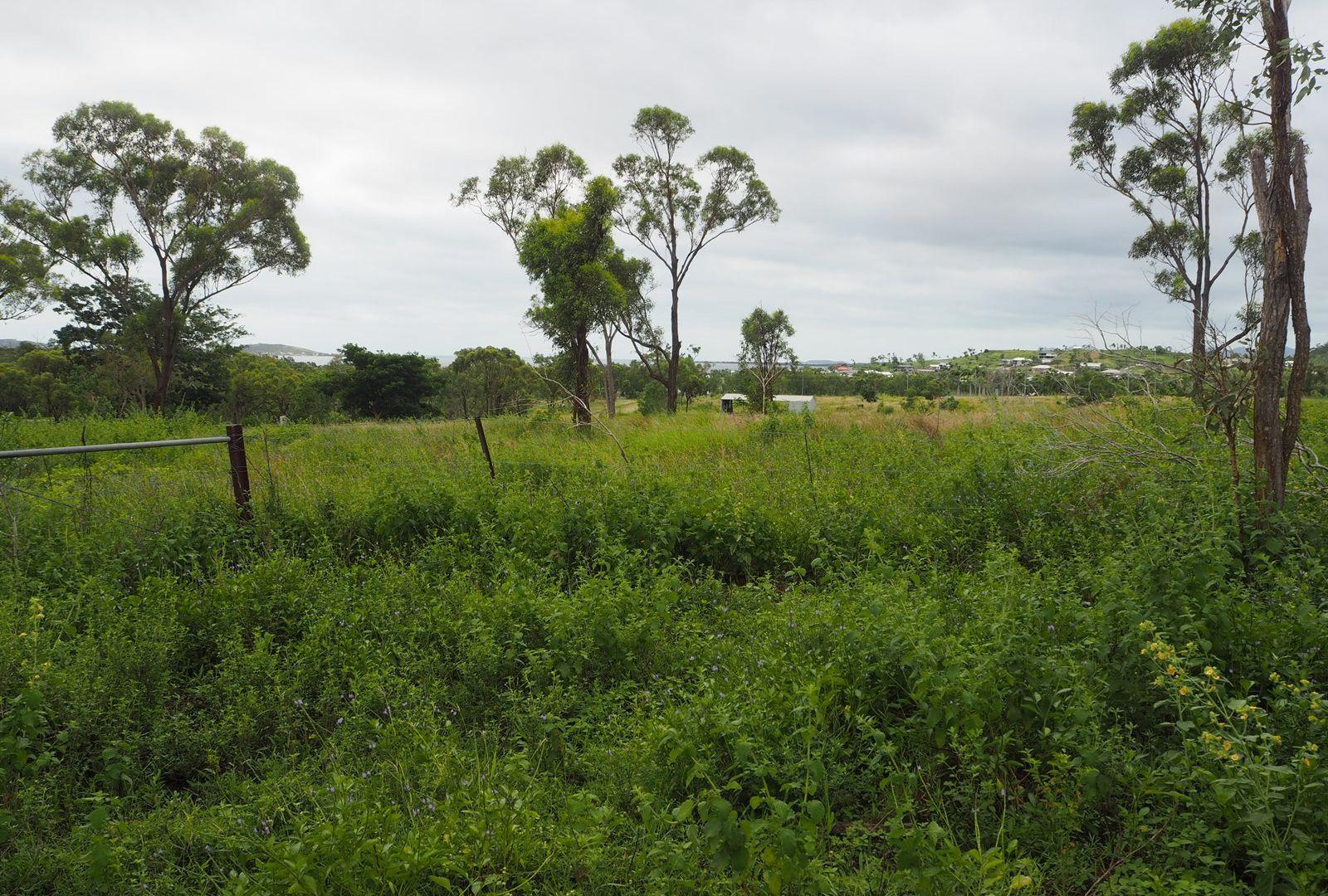 137 Africandar  Road, Bowen QLD 4805, Image 2