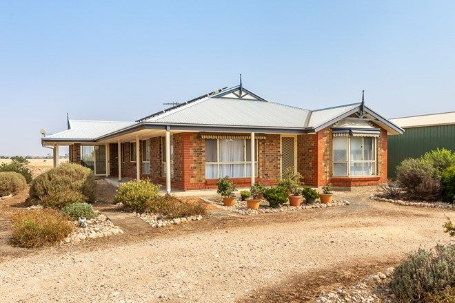 Picture of 60 Magpie Drive, TAILEM BEND SA 5260