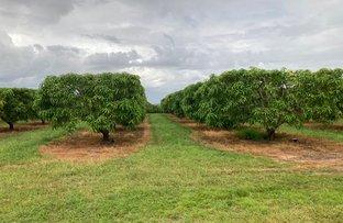 Picture of Schincariol Road, Dimbulah QLD 4872