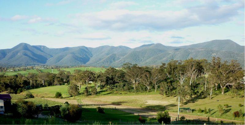 98 Snowy Mountains Hwy, Bemboka NSW 2550, Image 1