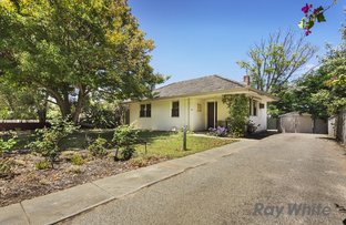 Picture of 31 Curven Road, Hamilton Hill WA 6163