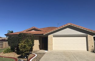 Picture of 21 O'Reilly Drive, Caloundra West QLD 4551