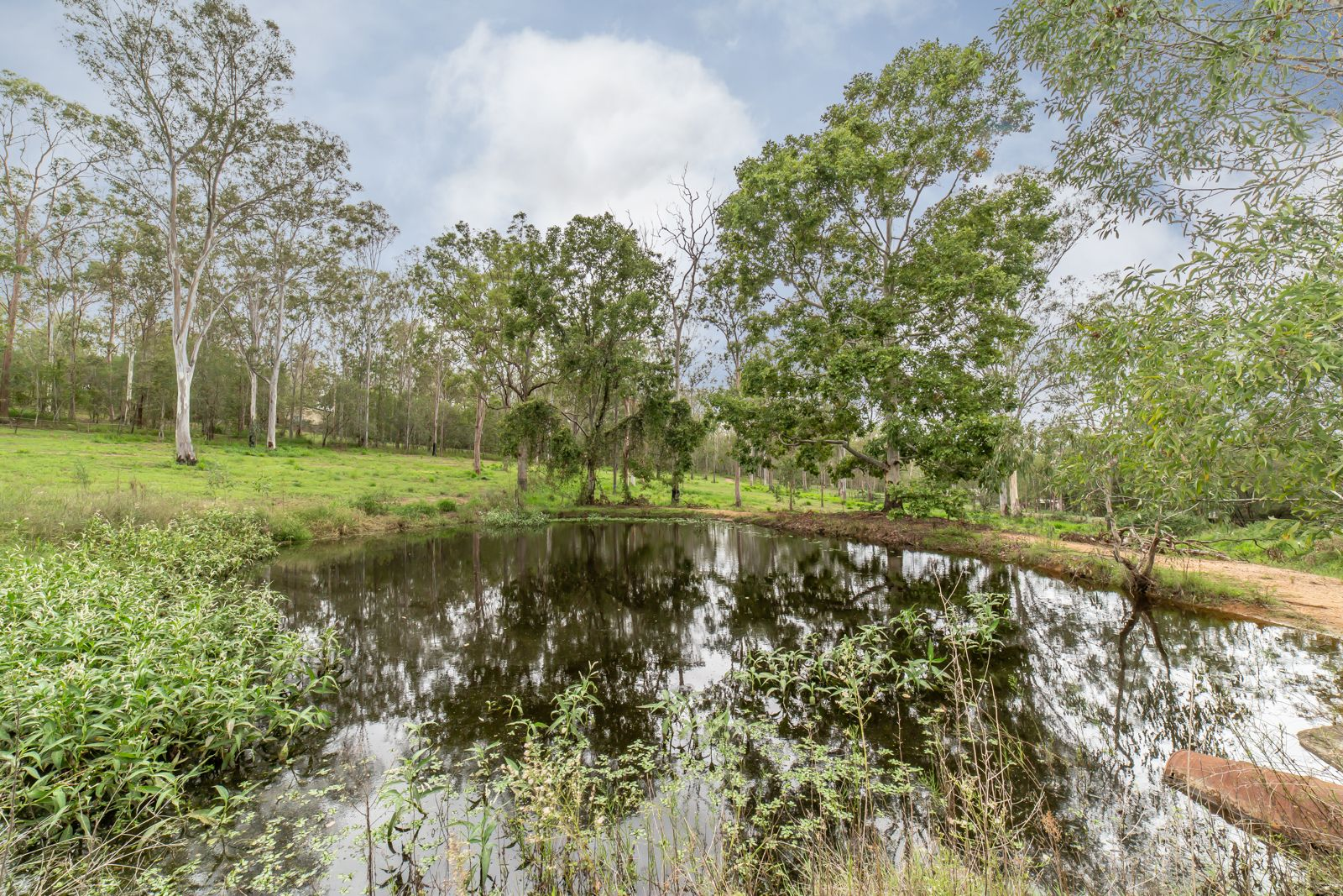 206 Clifton Drive, North Maclean QLD 4280, Image 1