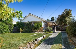 Picture of 7 Bambra Court, Vermont VIC 3133