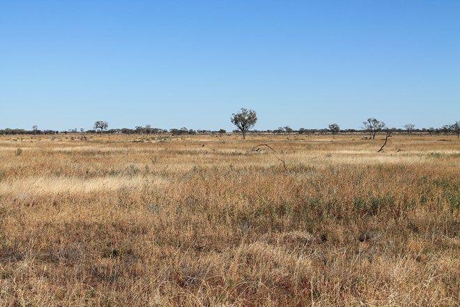 Picture of Emmet Road, BLACKALL QLD 4472