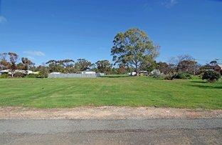 Picture of Railway Terrace, Paskeville SA 5552