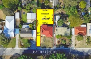 Picture of 31 Hartley Street, Coolbellup WA 6163