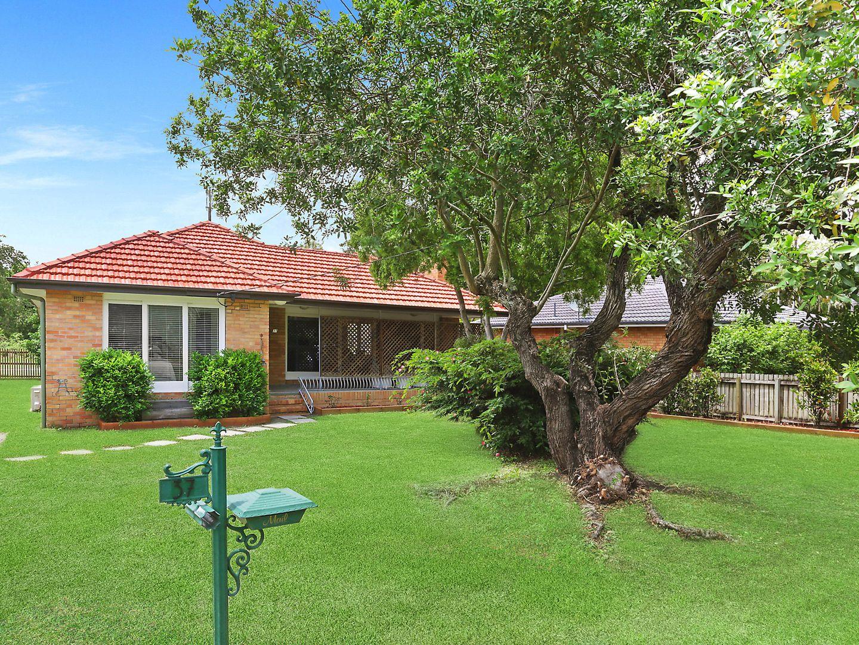 37 Orient Road, Yeronga QLD 4104, Image 1
