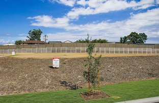 Picture of Lot 209 Heartwood Drive, Edgeworth NSW 2285