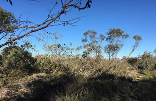 Picture of 13 Qualup Way, Fitzgerald WA 6337