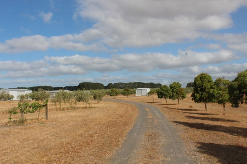 245 Deepdene Road, Birregurra VIC 3242, Image 1