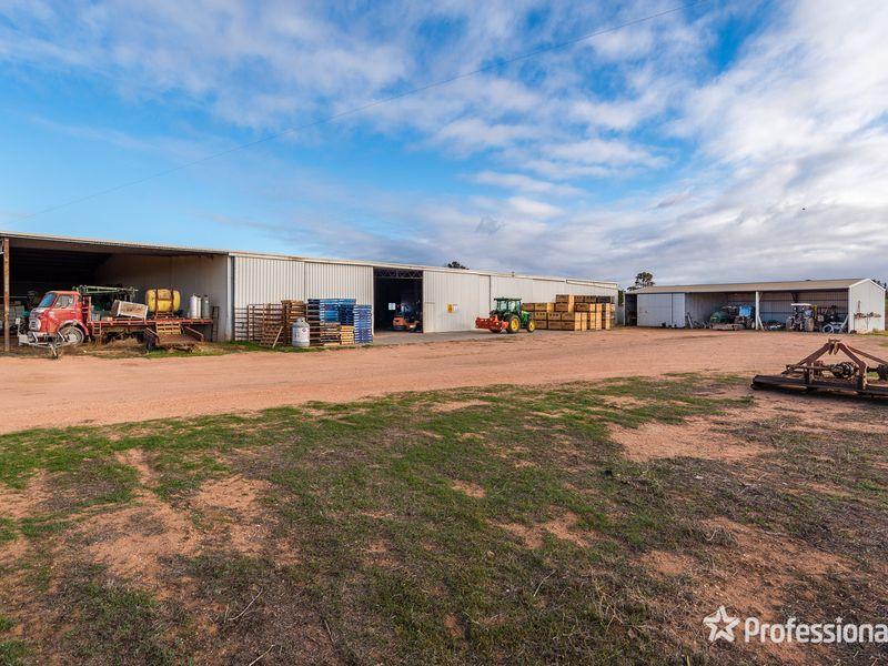 2756 Tapalin Mail Road, Euston NSW 2737, Image 1
