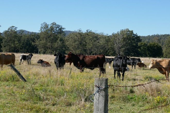 Picture of 83 Farm Road, BONALBO NSW 2469
