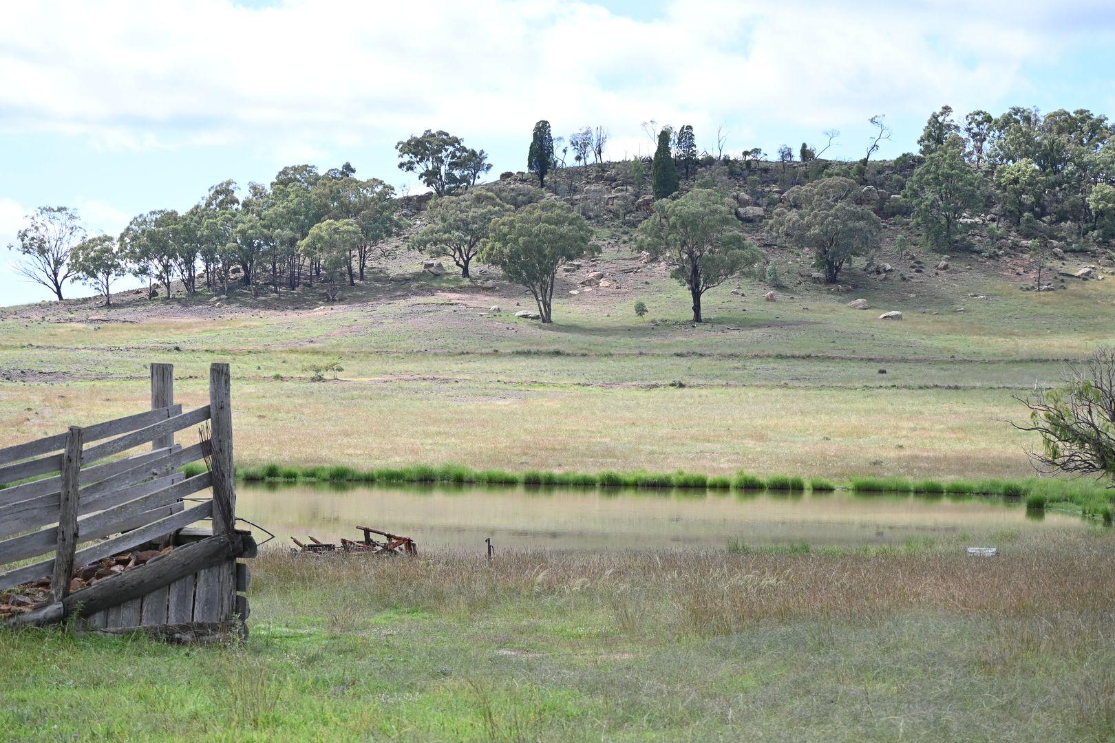 'Bunndarra & Towealgra' Digilah West Road, Dunedoo NSW 2844, Image 0
