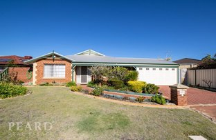 Picture of 16 Pinnacles Place, Ballajura WA 6066