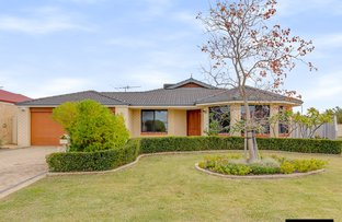 Picture of 17 Autumn Crescent, Thornlie WA 6108