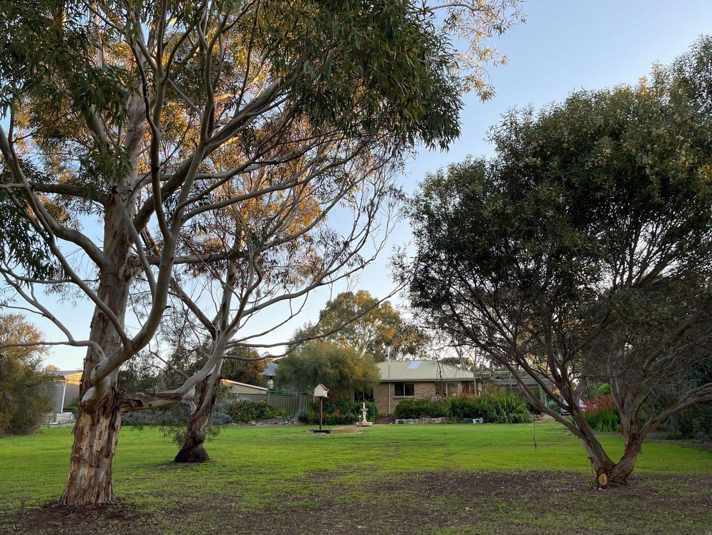 14 Meshach Burge Terrace, Lyndoch SA 5351