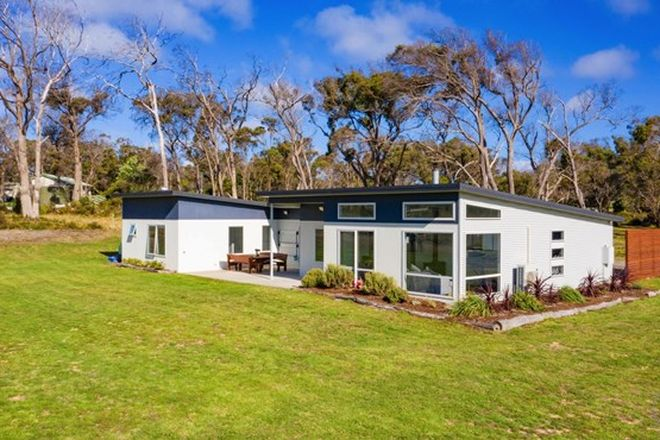 Picture of 443 Sandy Points Road, BRIDPORT TAS 7262
