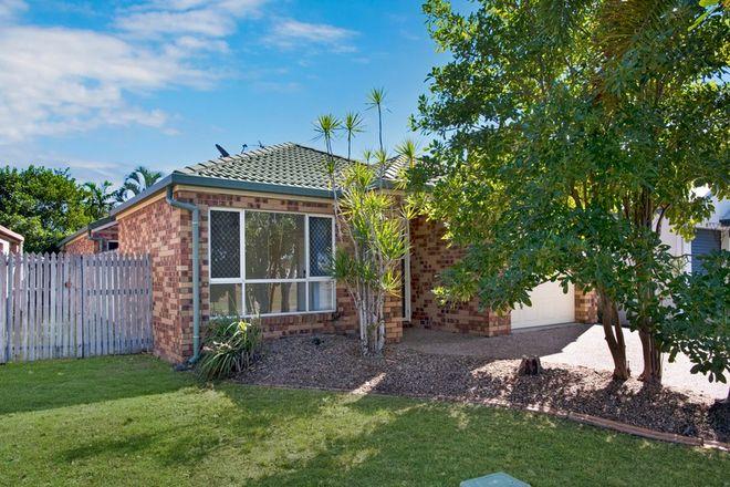 Picture of 6 Torenia Close, KIRWAN QLD 4817