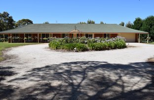 Picture of 427 Ervins Road, Pyramid Hill VIC 3575