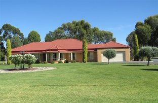 Picture of 28 Kilkerrin Drive, Moama NSW 2731