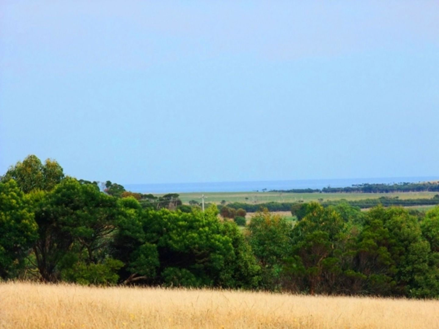LOT 1 PYRAMID ROCK ROAD, Ventnor VIC 3922, Image 0