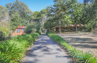 Picture of 7 Kain Avenue, Aldgate SA 5154