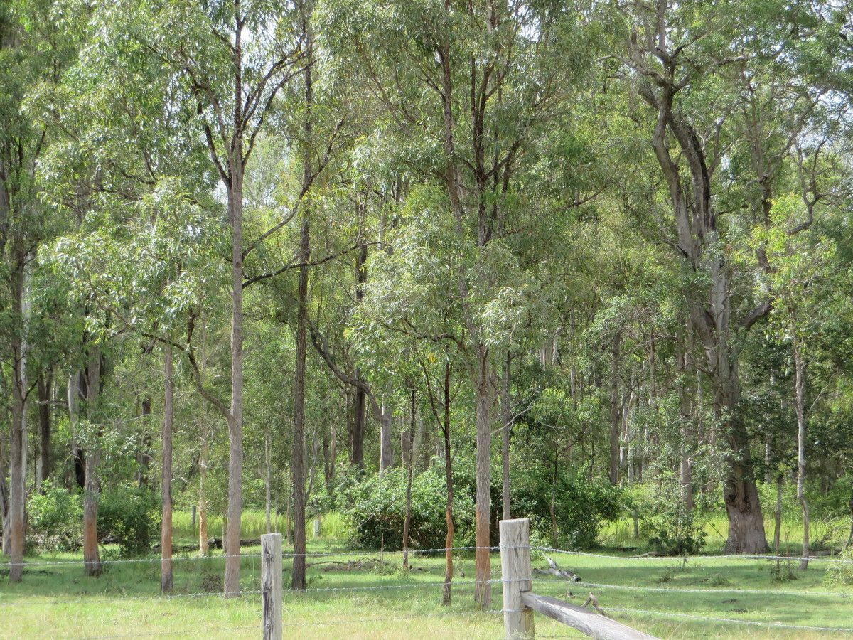 2513 (B) Old Tenterfield Road, Rappville NSW 2469, Image 0