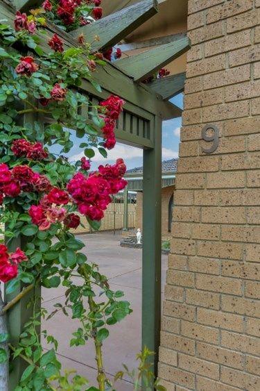 9 Frogmore Road, Kidman Park SA 5025, Image 1