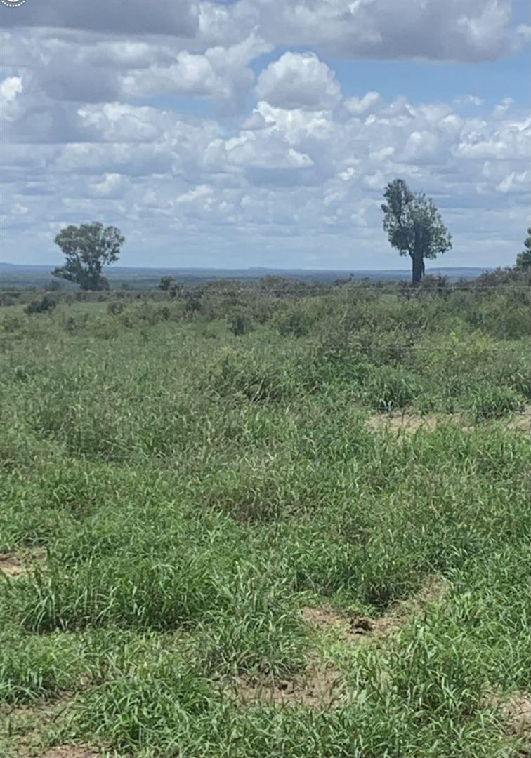 0 Tambo-Alpha Road, Tambo QLD 4478, Image 1