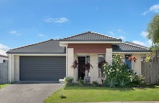 Picture of 30 Sunrise Terrace, Little Mountain QLD 4551